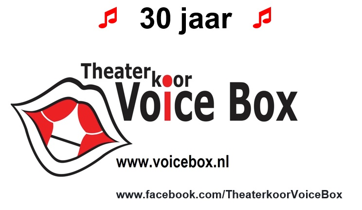 voice box logo 30 jaar